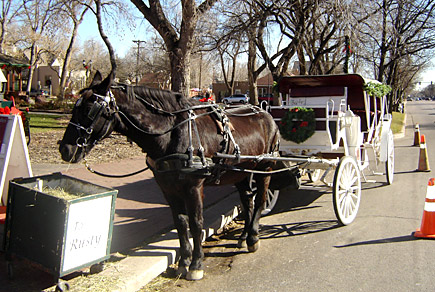 Horse and carriage ride in Old Colorado City (near Pike's Peak in Colorado Springs)
